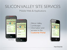 Silicon Valley Landscape Marketing Folder